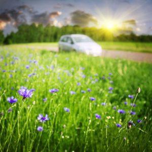 Car in Spring